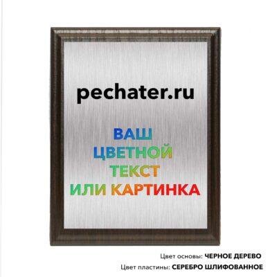 Полноцветная плакетка Москва, быстро